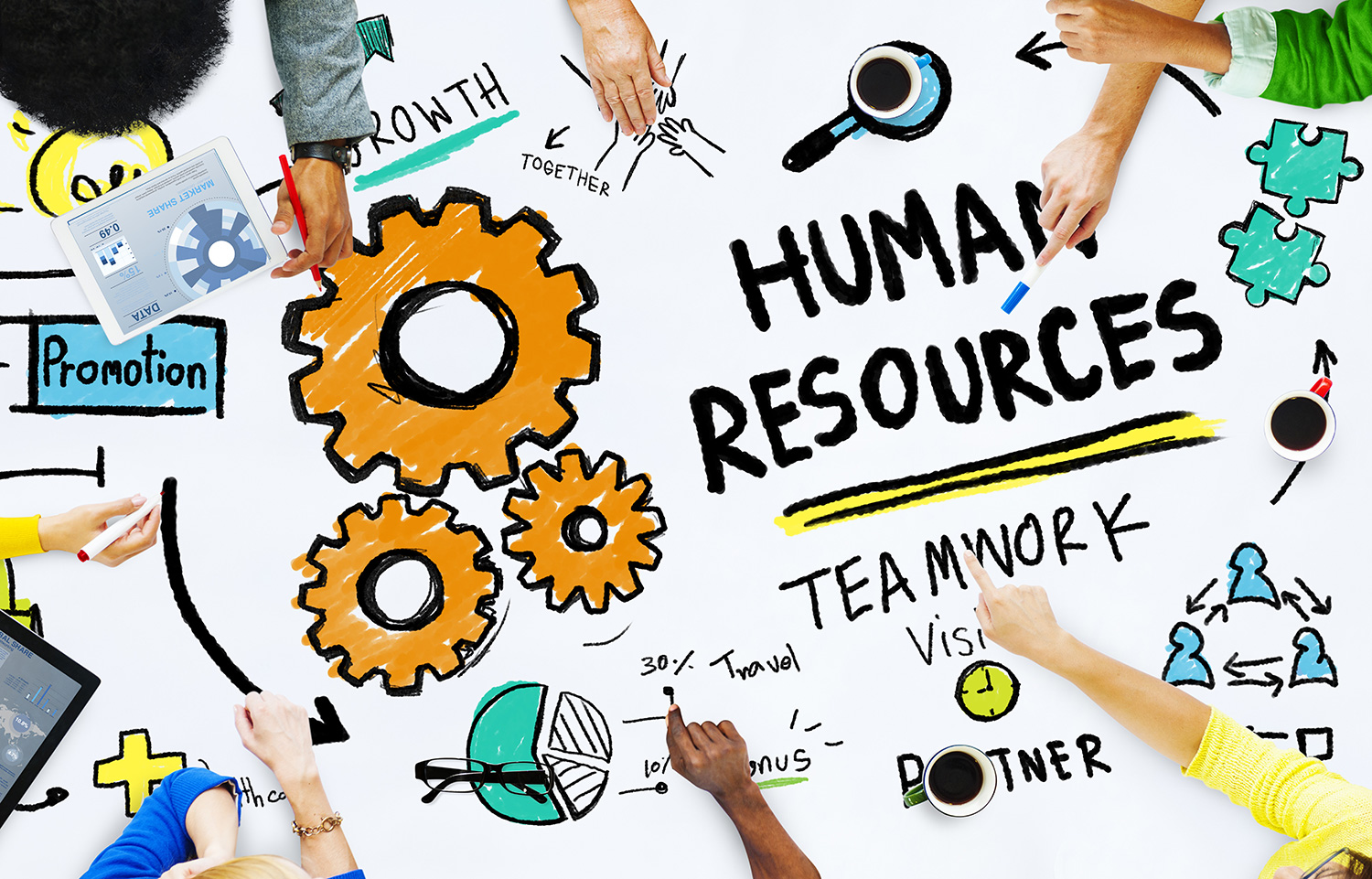 Human Resources Management Career